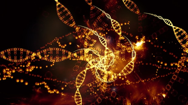 understanding elements of dna